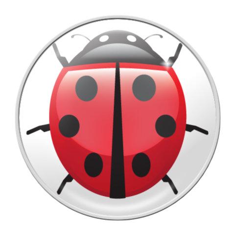 LADYBUG – RaceDots rajtszámtartó mágnes