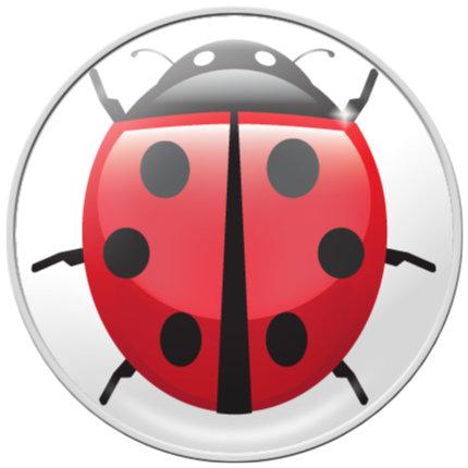 RaceDots – Ladybug